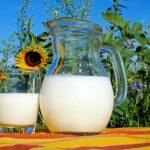 Milch wurde früher mit Steinen gekocht.
